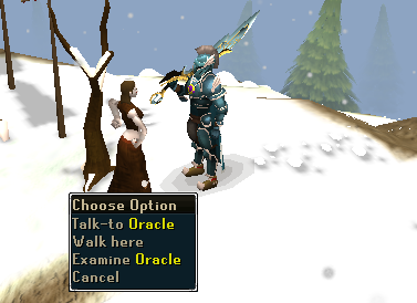 Talk to oracle