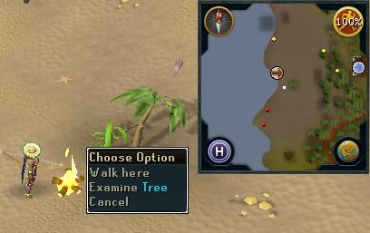 Examine Tree