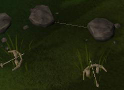 A tripwire set between two rocks