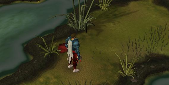 Push through the reeds