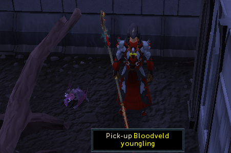 Capturing a Bloodveld Youngling