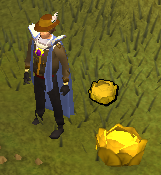 The Gilded Cabbage