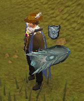 Sir Owen's shield