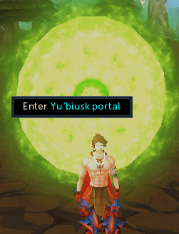 Enter the Yu'biusk portal