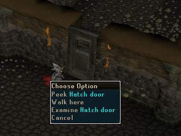 Peek hatch door