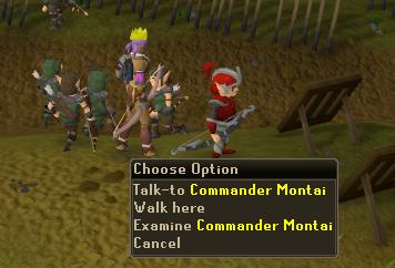 Talk to Commander Montai