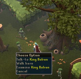 Talk to King Bolren