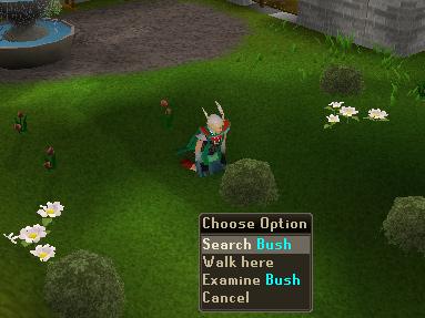 Watchtower - 'Search' Bush