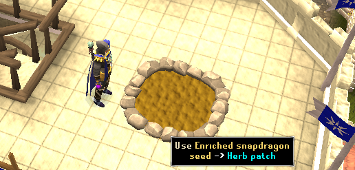 Use enriched snapdragon seed on herb patch