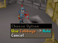 Use the cabbage with the hole