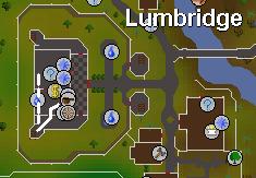 The lumbridge cook's range