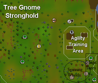 Tree Gnome Stronghold area map