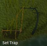 Set Trap