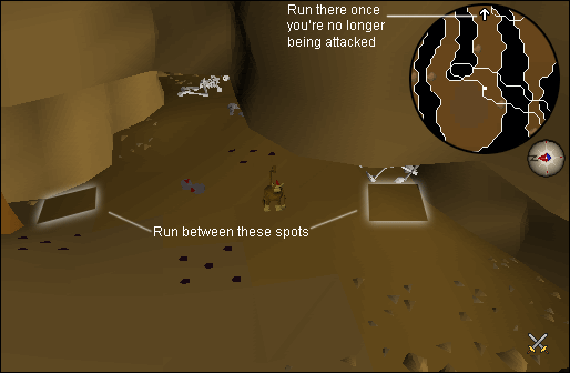 Inside the ape atoll dungeon