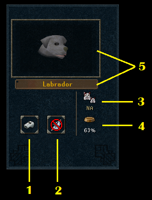 The pet interface