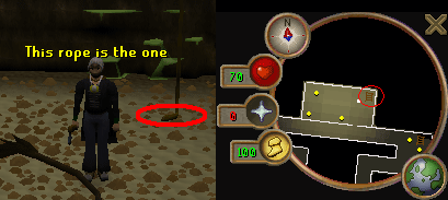 This rope allows access to the cavern
