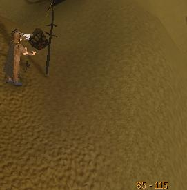 Training hunter
