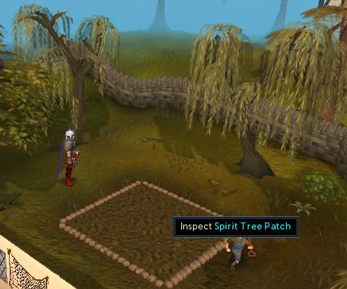 Spirit Tree Patch at Port Sarim