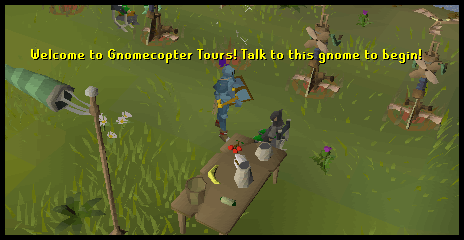 Speak to Hieronymus to begin to learn about gnomecopters