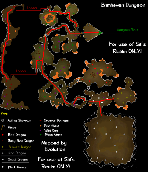 A map of the Brimhaven Dungeon