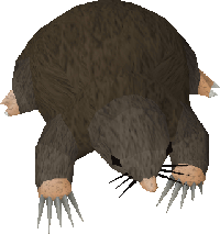 The Giant Mole!