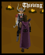 Thieving Cape model