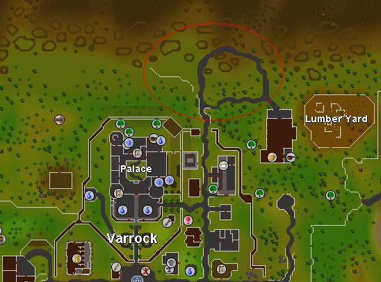 Low-Level Varrock wilderness