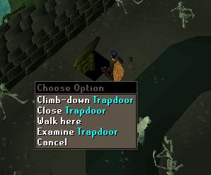 Climb down trapdoor